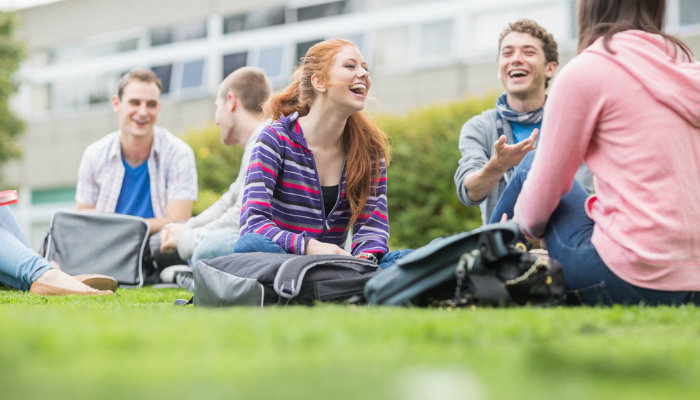 A group of cheerful students sitting on the grass in the park, talking and laughing